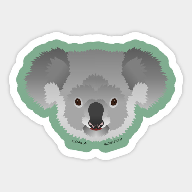 469d735b4 Baby Koala Face