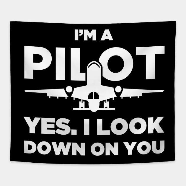 Funny Airplane Pilot Quote