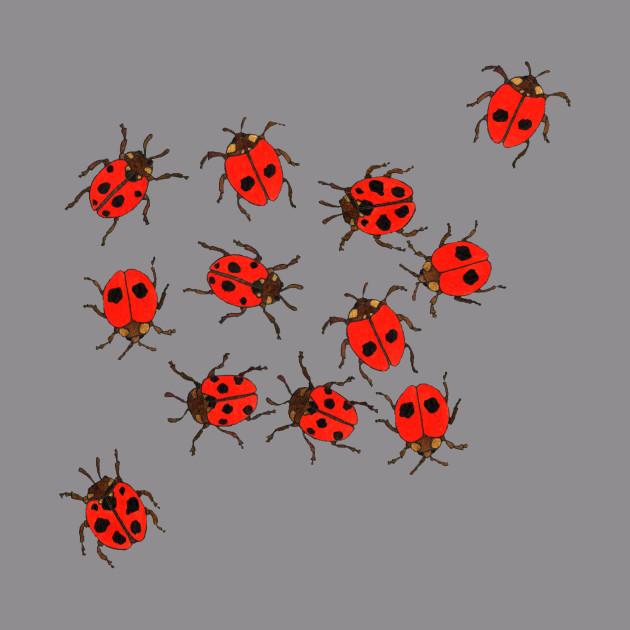 Ladybirds released