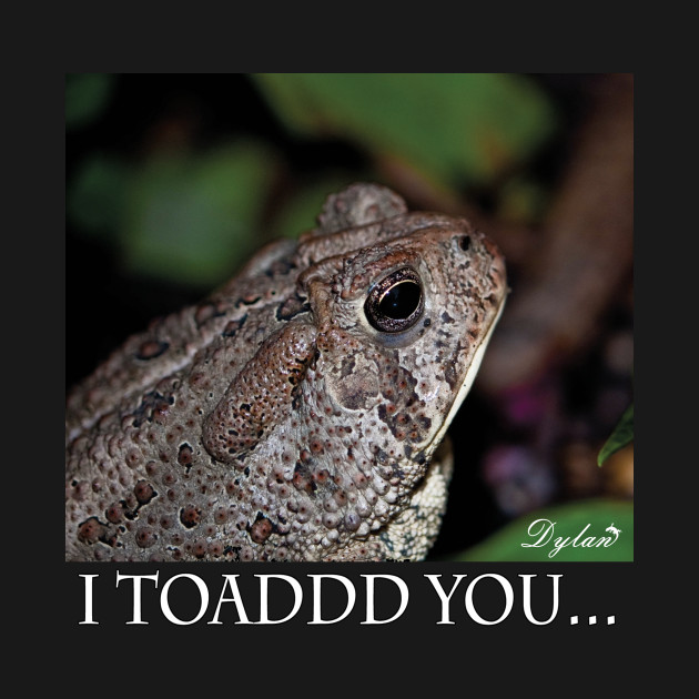 I Toad you