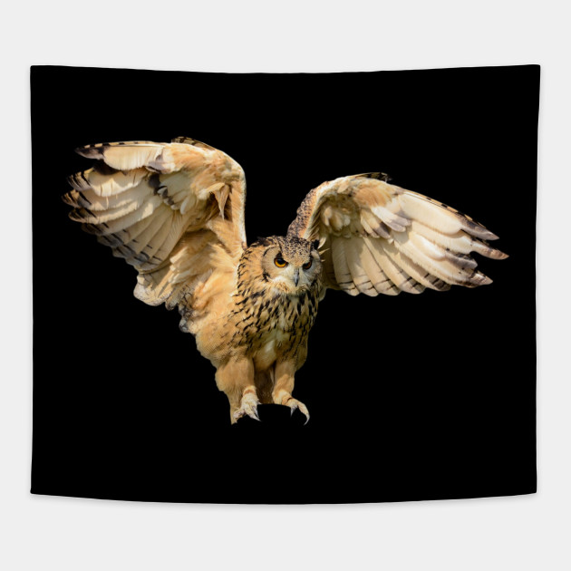 Image of: Clipart Animals Flying Owl Ancient Bird Nocturnal Animal Tapestry Teepublic Animals Flying Owl Ancient Bird Nocturnal Animal Eagle Tapestry