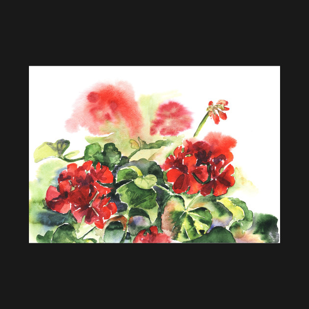 Plant geranium, flowers and leaves, watercolor