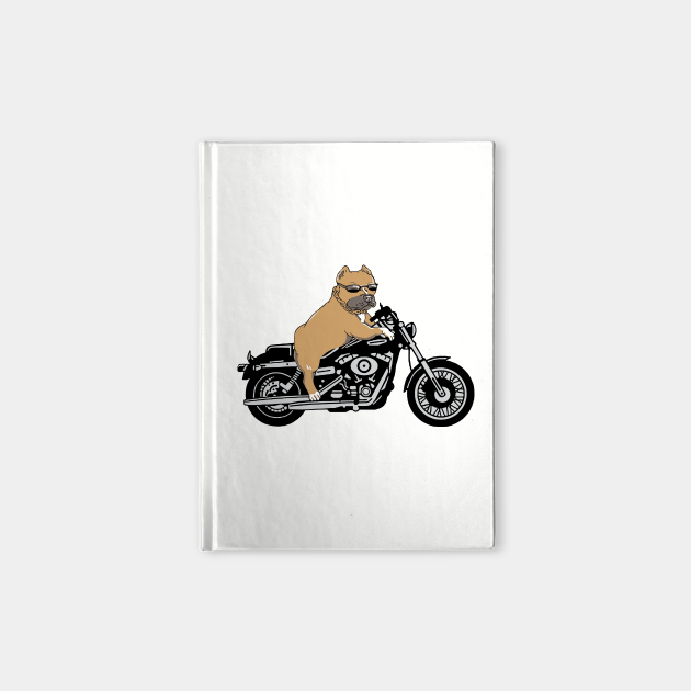 Pit Bull Bike