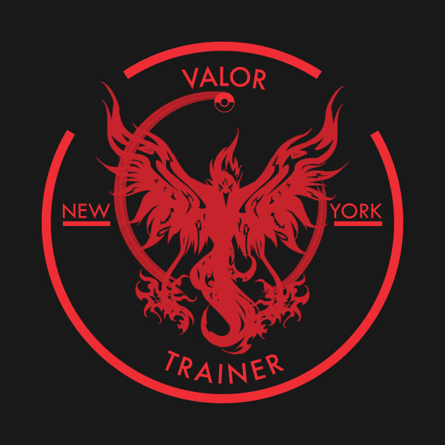 Team Valor New York