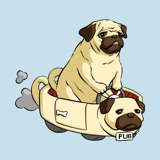 Pug driving a pug car
