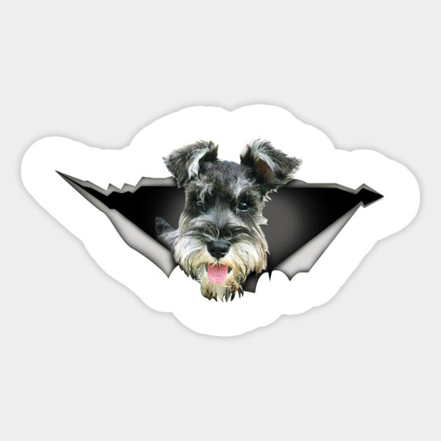 Schnauzer Car Sticker Dog Car Decal Schnauzer Decal Car Etsy