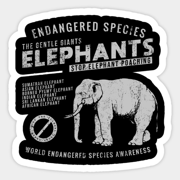 6d5e0c3cfa5a3 Colorful cute elephant. Stop Ivory Trade - Endangered Species Awareness  T-shirt Sticker