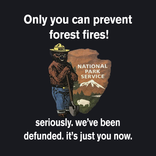 ONLY YOU CAN PREVENT FOREST FIREST! NATIONAL PARK SERVICE SERIOUSLY.WE'VE BEEN DEFUNDED.IT'S JUST YOU NOW. T-SHIRT
