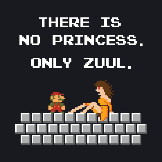 There is No Princess
