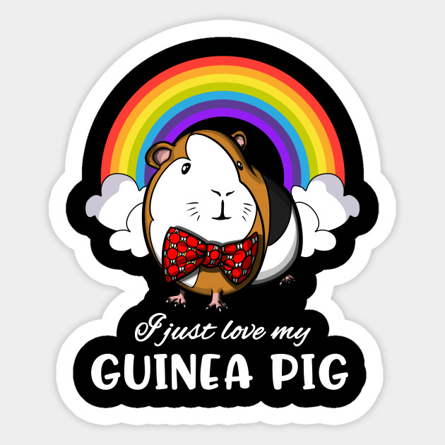 I Just Love My Guinea Pig Cute Rainbow Cavy Pet
