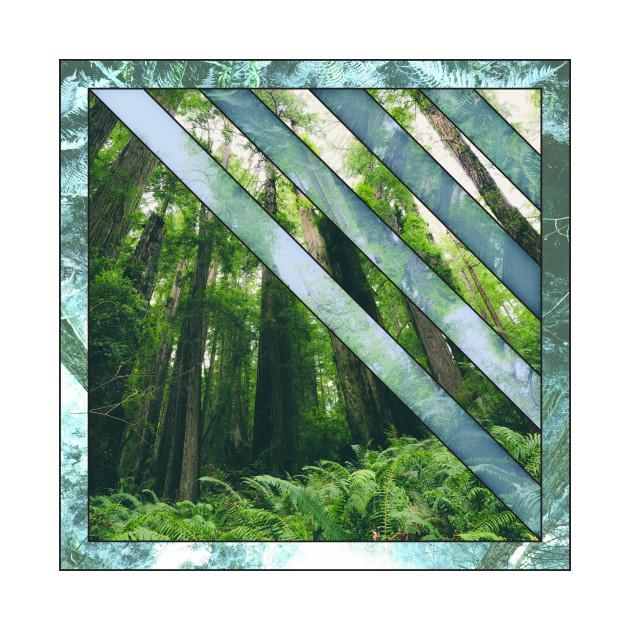 Redwood Tones