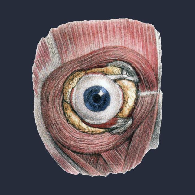 Human Anatomy Eyeball Eye Kids Long Sleeve T Shirt Teepublic