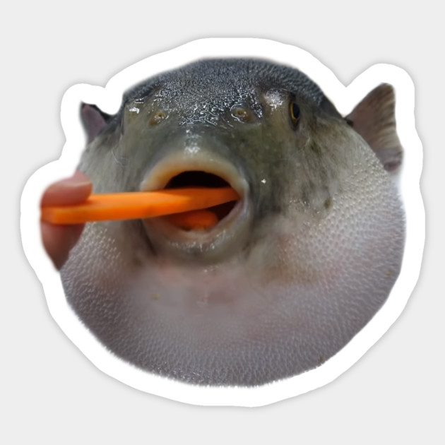 Pufferfish Eating Carrot Dank Meme - Pufferfish Eating ...