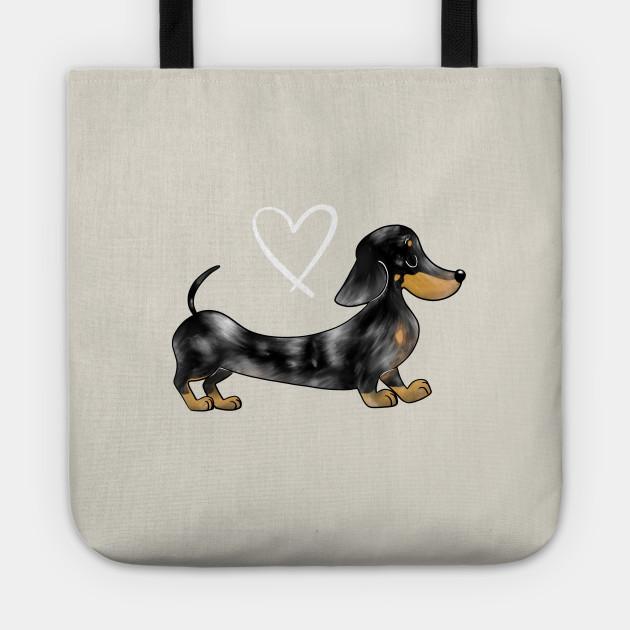 Dachshund Black and Tan dapple smooth haired sausage dog