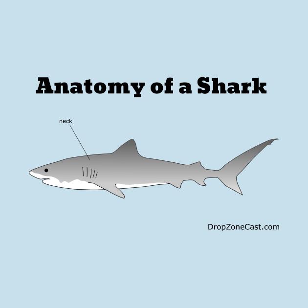 Anatomy of a Shark - Anatomy Of A Shark - Mug | TeePublic