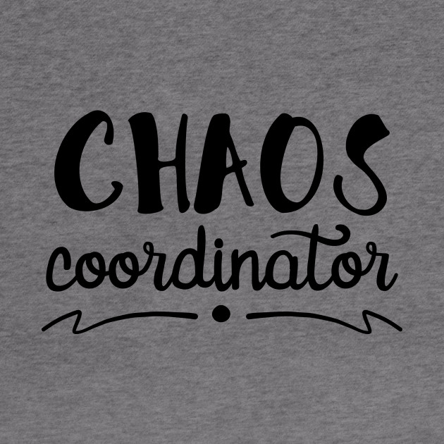 Political Consultant AKA Chaos Coordinator Hoodie