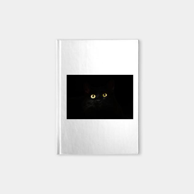 Black Cat in Darkness