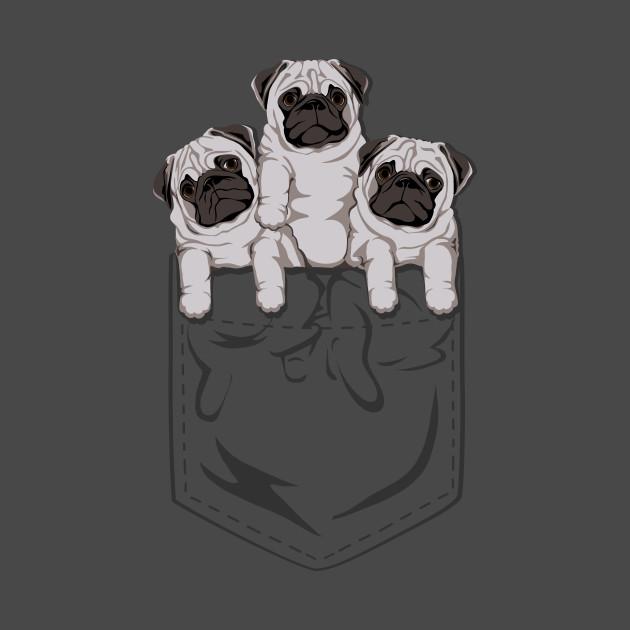Pocket Pugs