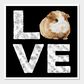 Guinea Pigs Clothes Posters and Art Prints | TeePublic