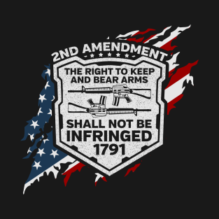Support Diversity Training Military Style 2nd Amendment Graphic T-Shirt