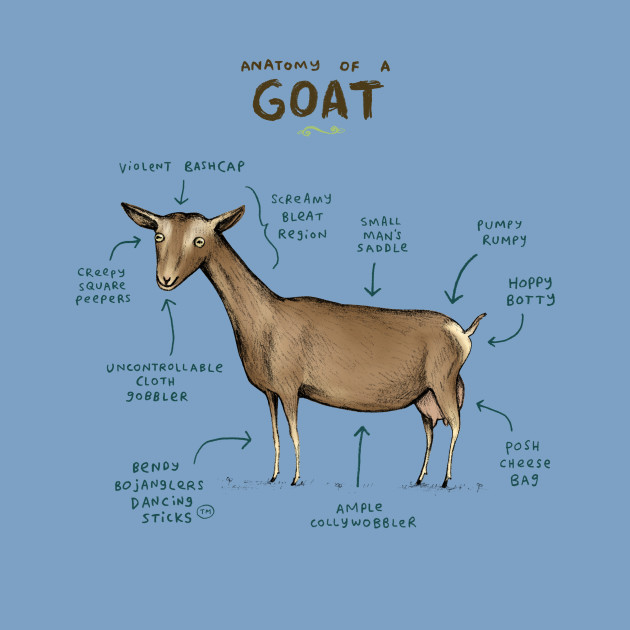 b13ec64fa Anatomy of a Goat - Anatomy - Kids T-Shirt | TeePublic