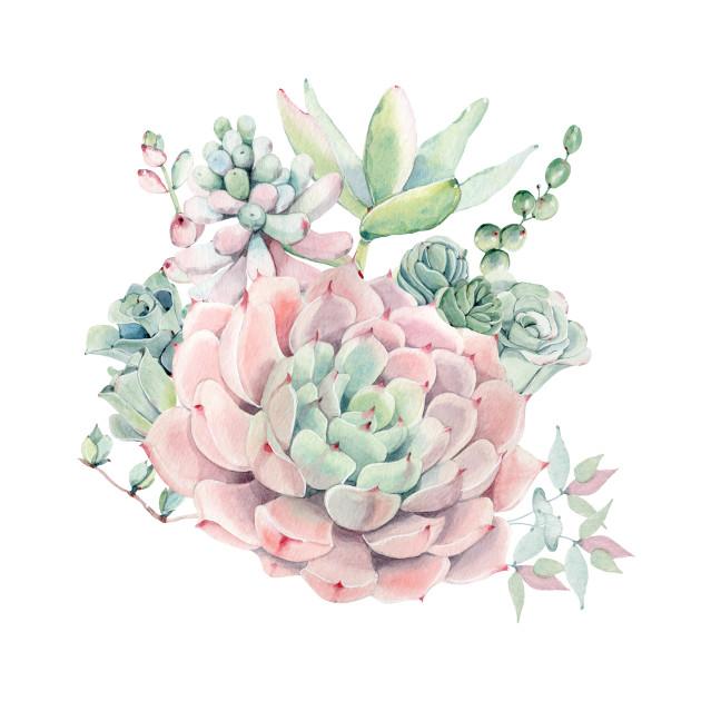 Beautiful Watercolor Succulents Succulent T Shirt