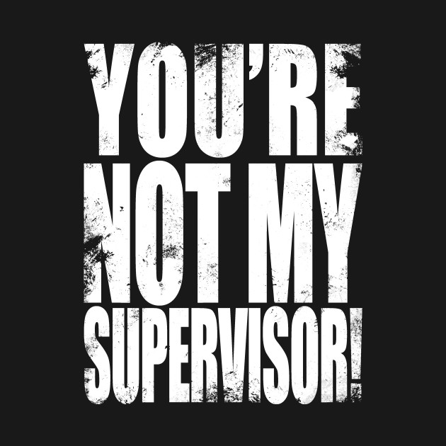 YOU'RE NOT MY SUPERVISOR!