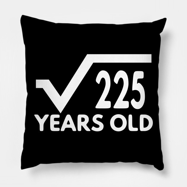 Funny Math T Shirt For Men Birthday Gift Of Age Boy And Girl 15th Idea Pillow