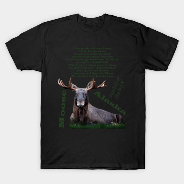 The Animal Symbols Of The Usa Moose Alaska Usa Moose Alaska