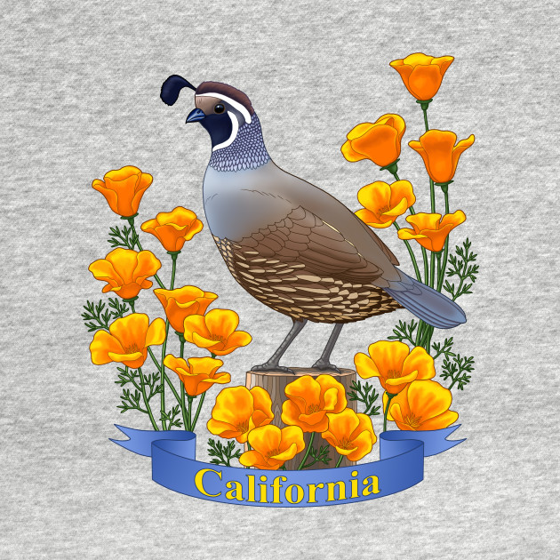 California State Bird Quail and Poppy Flower