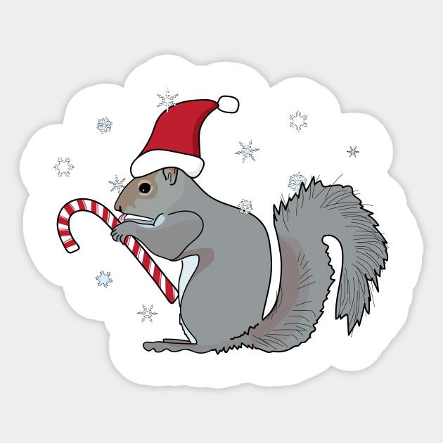 Christmas Squirrel.Squirrel In Santa Hat Licks Candy Cane