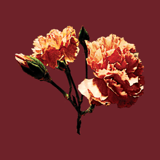 c61c9ed69 Carnations - Two Peach Carnations T-Shirt
