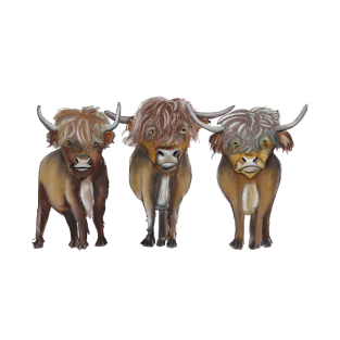 Scottish Highland cattle t-shirts