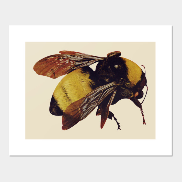 98ed9c7cdce689 Tyler the creator BEE - Who Dat Boy - Posters and Art Prints