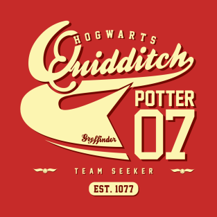 Quidditch Potter Tee