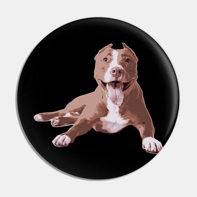 Pit bull - My dog