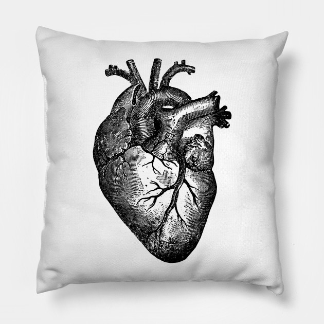 Vintage Heart Anatomy - Anatomical Heart - Pillow | TeePublic