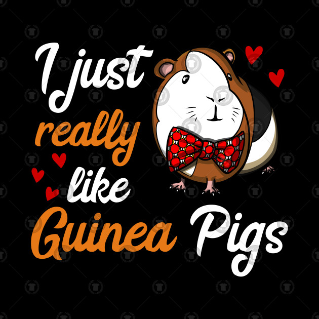 I Just Really Like Guinea Pigs Funny Pet