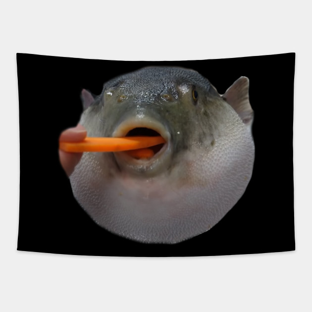 Puffer Fish Meme