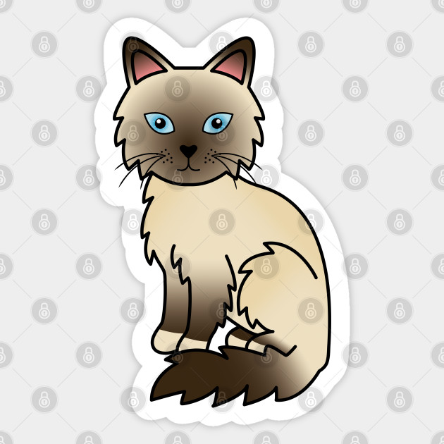 Chocolate Point Birman Ragdoll Cute Cartoon Cat Illustration Ragdoll Cat Sticker Teepublic