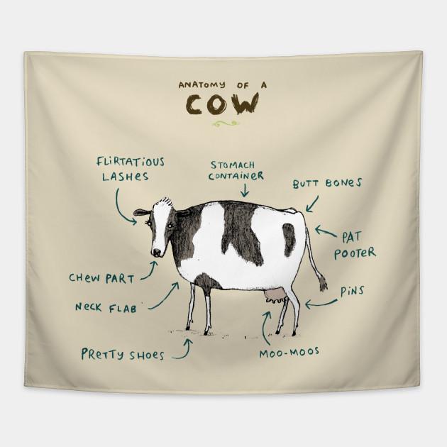 Anatomy Of A Cow Bovine Tapestry Teepublic