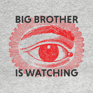 big brother problem and solution For more than 100 years, big brothers big sisters has operated under the belief that inherent in every child is the ability to succeed and thrive in life.