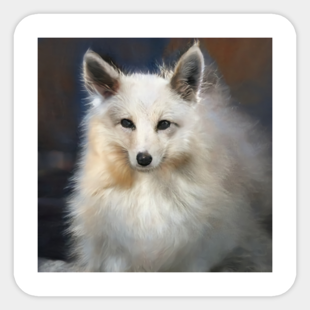 Wild Animal Wildlife Art White Fox
