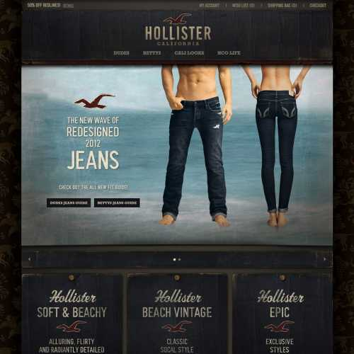 Hollister home page