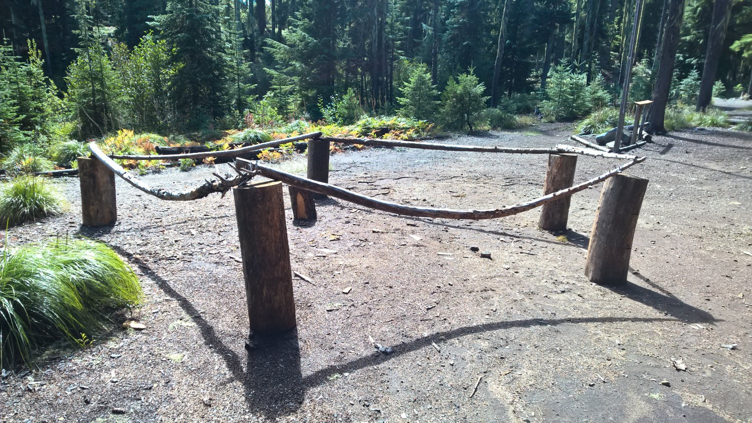 Adopt-A-Campsite For Camp Pioneer | Cascade Pacific Council, BSA