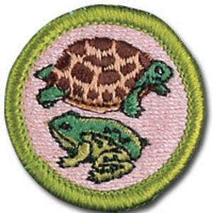 Reptile & Amphibian Study - T168 MBC