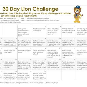 Lion 30-Day Challenge