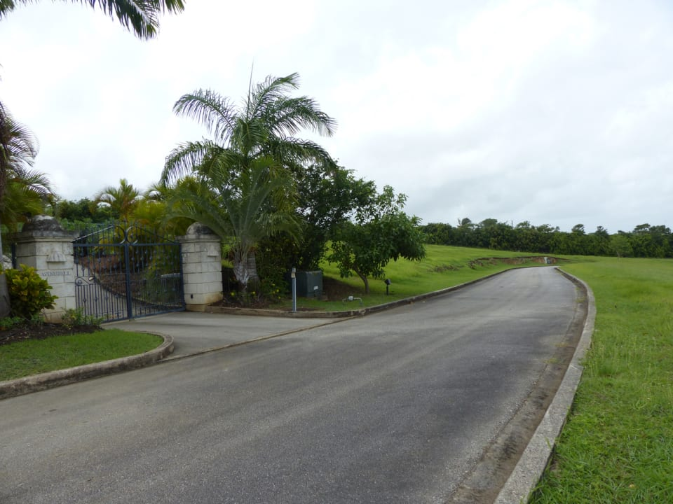 Road towards the lot