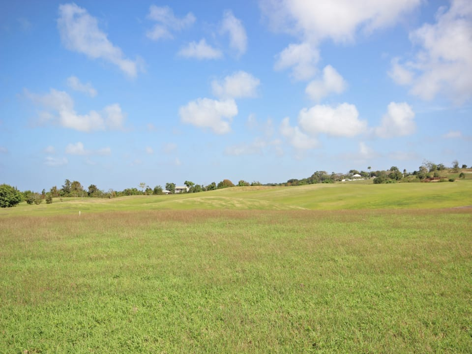 View of the lot from the road