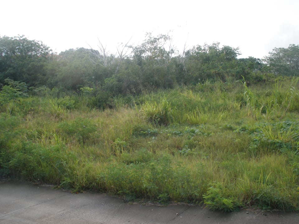 Applegrove Lot 34 as at June 25, 2013